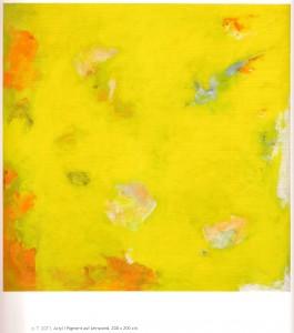 o.T. 2011, Acryl/Pigment auf leinwand, 200 x 200 cm